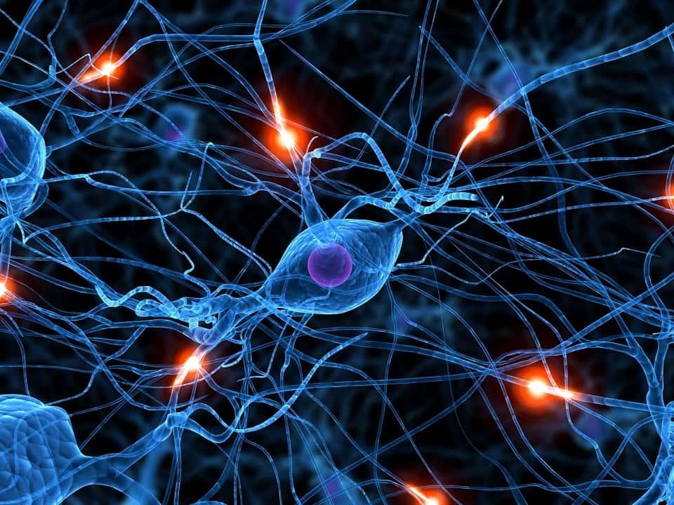 Photo of Como restaurar habilidades perdidas com neurotecnologia