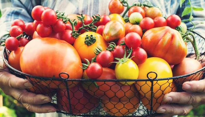 Photo of Alimentos orgânicos não são bons apenas para o corpo, mas também para a mente e a alma