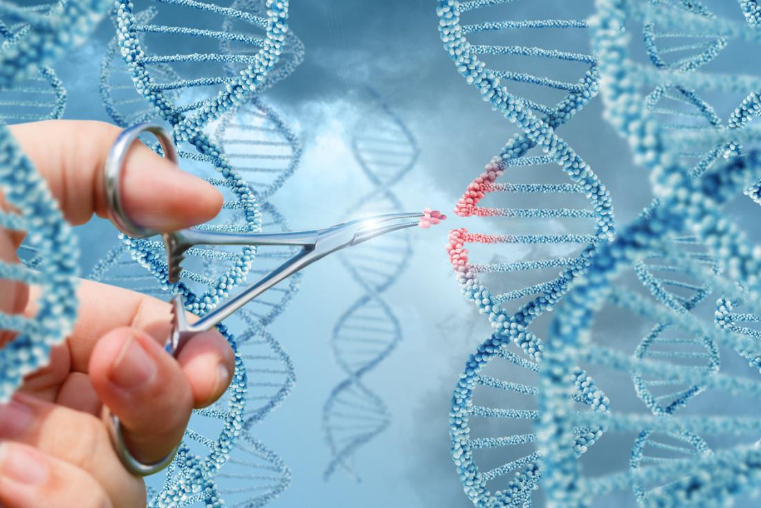 Photo of CRISPR usado em humanos pela primeira vez nos EUA