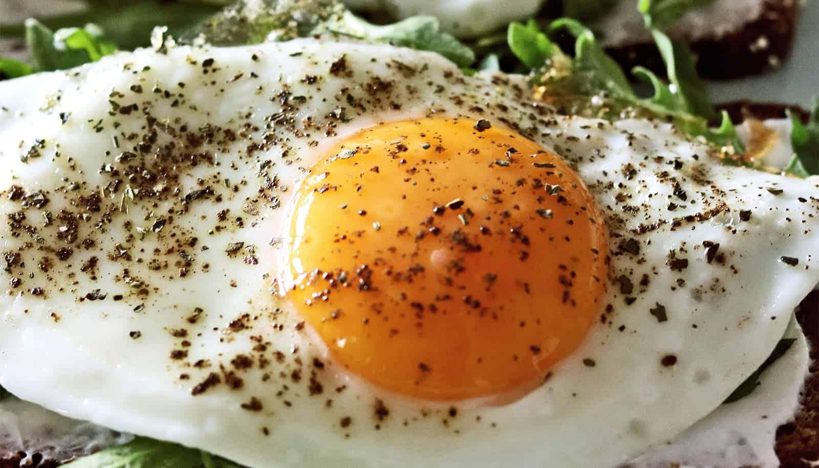 Photo of Parar de comer carne e ovos ajuda combater o câncer?